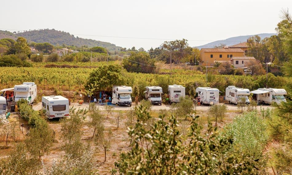 Low-Cost Motorhome Park at Camping Orti di Mare, Lacona - Elba Island, Italy