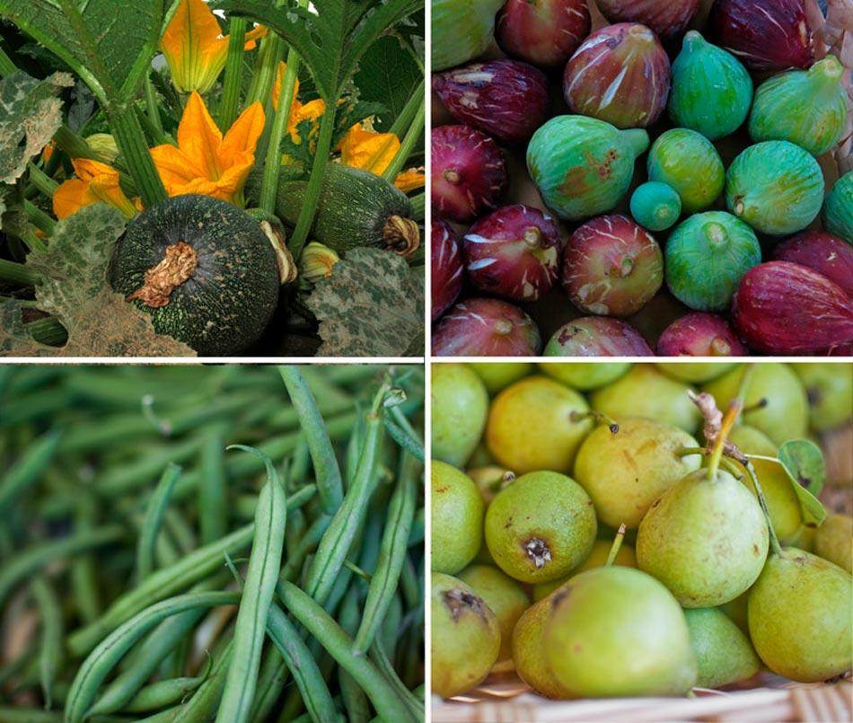 Frutta, verdura, marmellate, pane e biscotti, vino; il frutto del nostro lavoro. Camping Orti di Mare, Lacona - Isola d'Elba, Italia