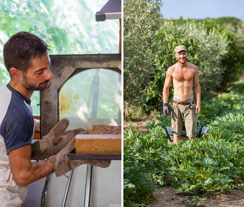 Arbeiders, Orti di Mare: Camping in de buurt van de zee, Elba Italië