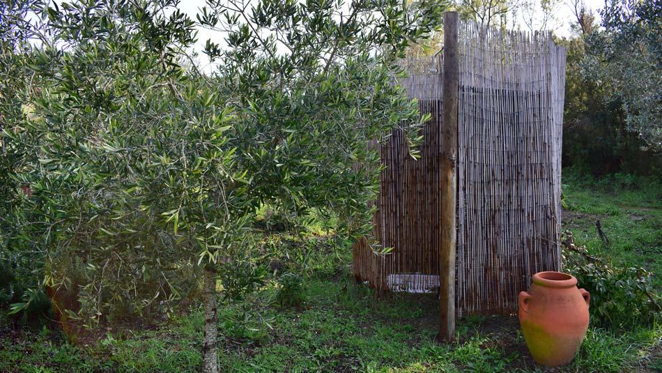 Wohnung umgeben von Natur, nur einen Steinwurf vom Meer entfernt. Camping Orti di Mare, Insel Elba - Italien