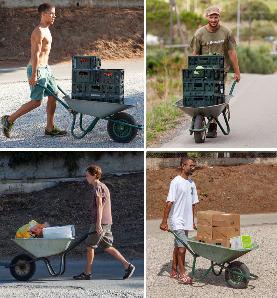 Hard job, Orti di Mare: Camping close to the sea, Elba, Italy
