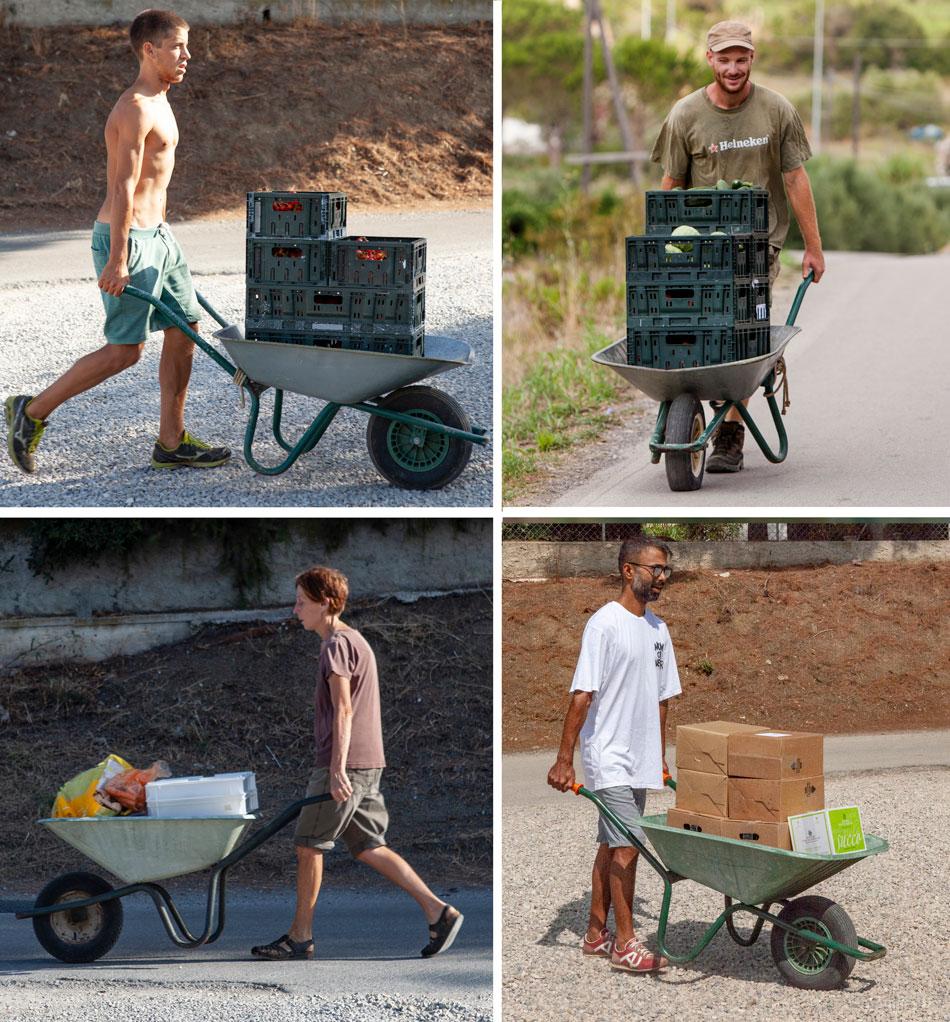 Hard werken, Orti di Mare: Camping in de buurt van de zee, Elba Italië